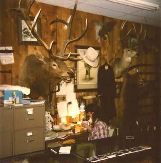 Cimarron Houston 1988